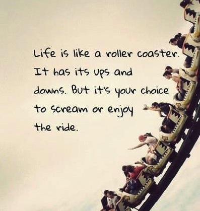 just_scream_and_enjoy_the_ride-247385